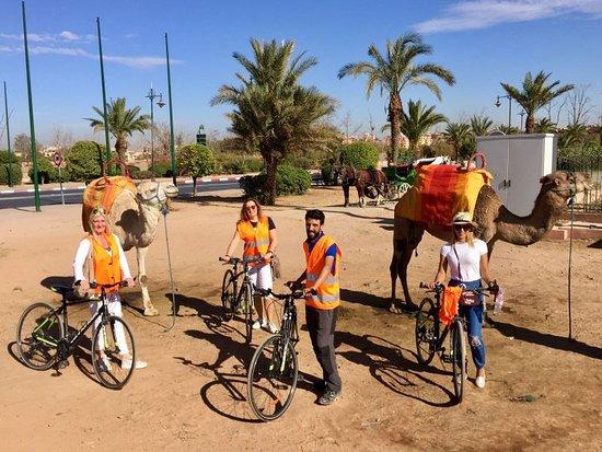 biking-in-marrakech-with