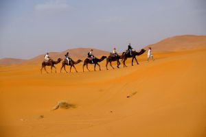 View Morocco desert treks and tours.