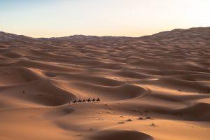 Sahara Desert with View Morocco tours